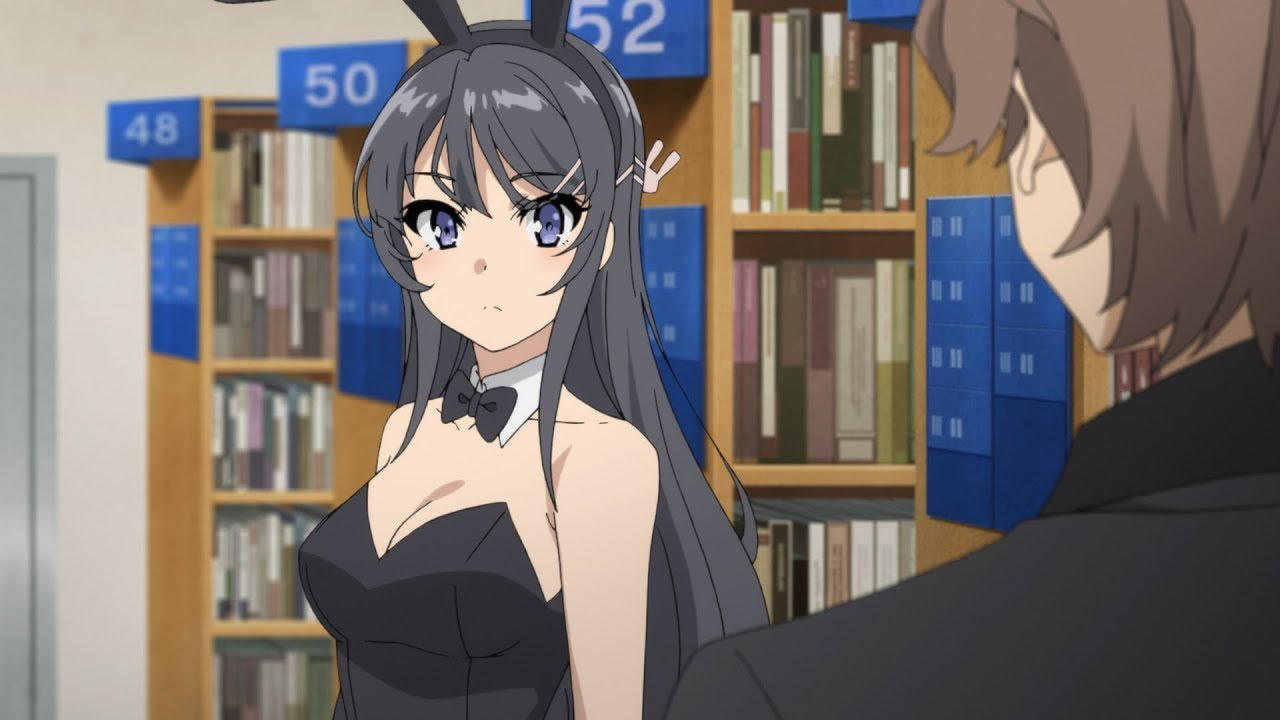Rascal Does Not Dream of Bunny Girl Senpai Light Novel