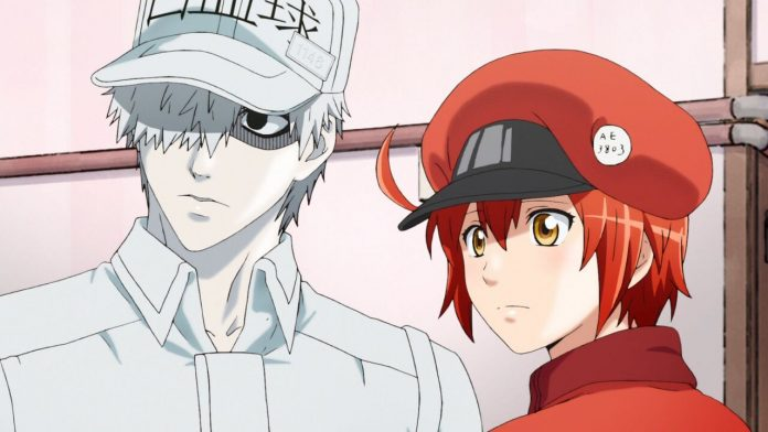 Cells at Work Season 2 Release Date Presumably Revealed